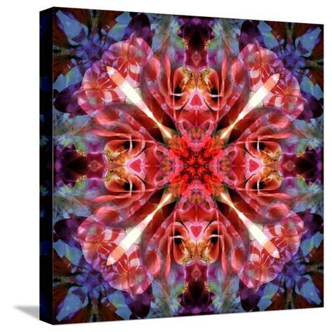 Mandala Ornament from Flower Photographs-Alaya Gadeh-Stretched Canvas Print