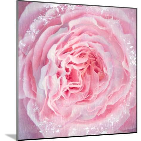 A Floral Montage-Alaya Gadeh-Mounted Photographic Print