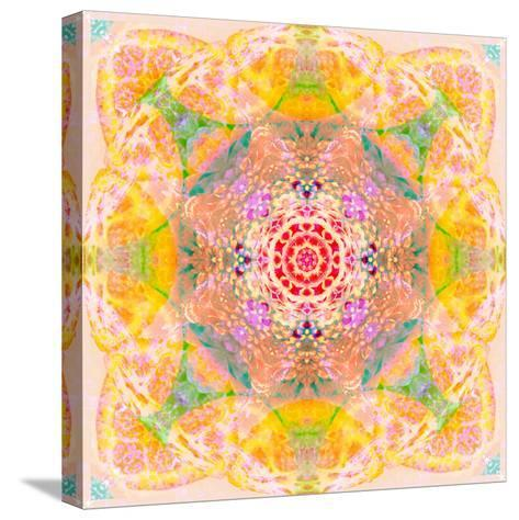 Symmetric Photographic Layer Work of Blossoms-Alaya Gadeh-Stretched Canvas Print