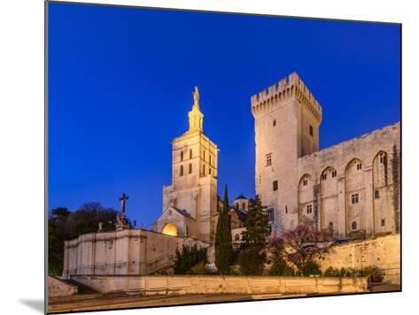 France, Provence, Vaucluse, Avignon, Place Du Palais, Papal Palace, Cathedral Notre Dame-Udo Siebig-Mounted Photographic Print