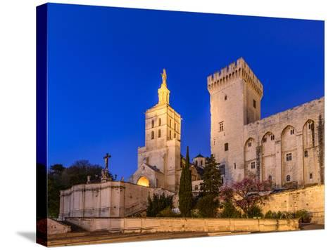 France, Provence, Vaucluse, Avignon, Place Du Palais, Papal Palace, Cathedral Notre Dame-Udo Siebig-Stretched Canvas Print