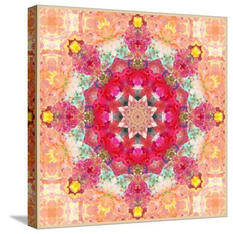 A Floral Montage, Layer Work from Pink and Red Poeny Blossoms and Pink Cherry Blossoms-Alaya Gadeh-Stretched Canvas Print