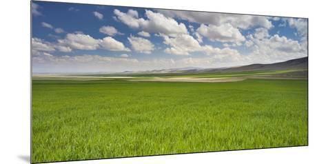 Clouds and Fields Close Konya, Anatolia, Turkey-Rainer Mirau-Mounted Photographic Print
