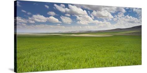 Clouds and Fields Close Konya, Anatolia, Turkey-Rainer Mirau-Stretched Canvas Print