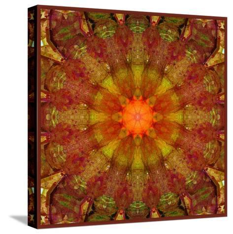 A Mandala from Leafes and Flowers, Conceptual, Symmetric Layer Work-Alaya Gadeh-Stretched Canvas Print