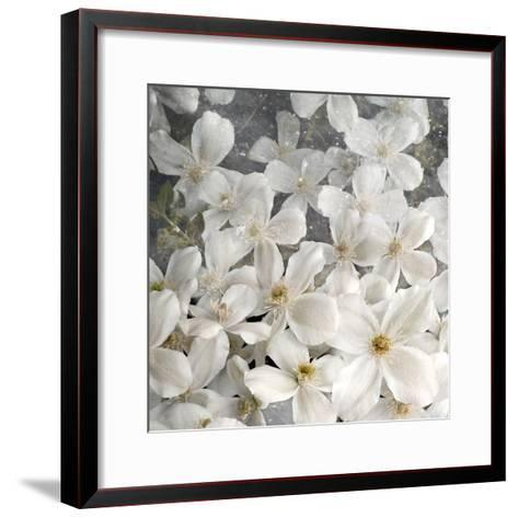 A Floral Montage from Clematis and Texture-Alaya Gadeh-Framed Art Print