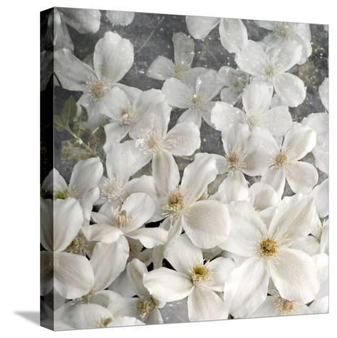 A Floral Montage from Clematis and Texture-Alaya Gadeh-Stretched Canvas Print