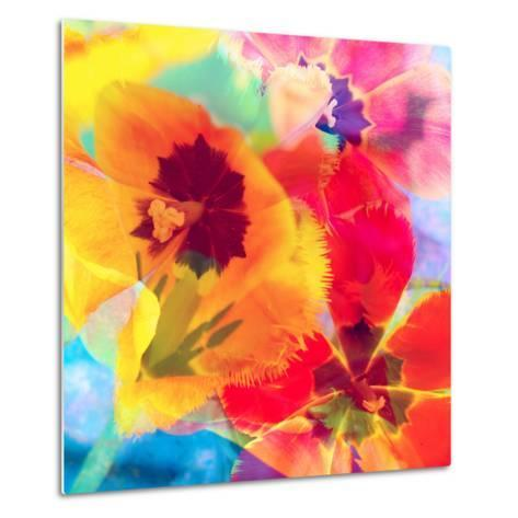 Dreamy Photographic Layer Work from Tulips-Alaya Gadeh-Metal Print
