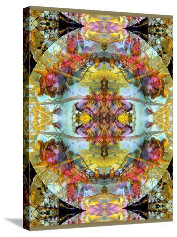Mandala, Symmetrical Arrangement of Natural Materials-Alaya Gadeh-Stretched Canvas Print