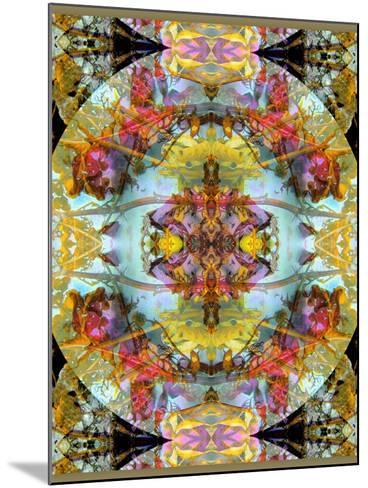 Mandala, Symmetrical Arrangement of Natural Materials-Alaya Gadeh-Mounted Photographic Print