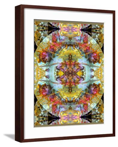 Mandala, Symmetrical Arrangement of Natural Materials-Alaya Gadeh-Framed Art Print