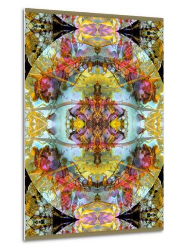 Mandala, Symmetrical Arrangement of Natural Materials-Alaya Gadeh-Metal Print