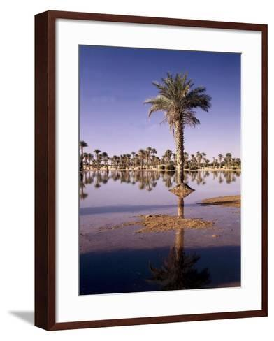 North Africa, Algeria, Sahara, Oasis, Date Palms-Thonig-Framed Art Print