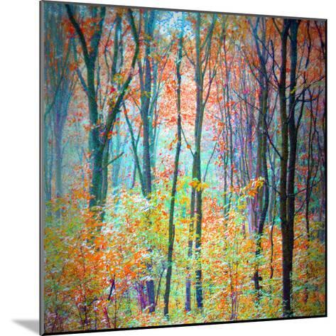 An Abstract Multicolorl Montage from the Forest, Photographic Layer Work-Alaya Gadeh-Mounted Photographic Print