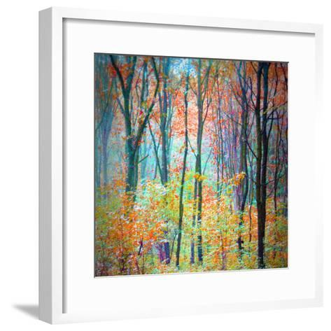 An Abstract Multicolorl Montage from the Forest, Photographic Layer Work-Alaya Gadeh-Framed Art Print