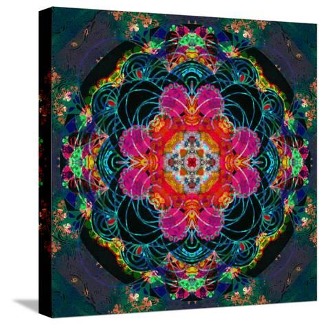 Photomontage of Flowers, Conceptual Composing Work-Alaya Gadeh-Stretched Canvas Print