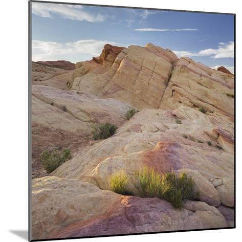 Sandstone, Valley of Fire State Park, Nevada, Usa-Rainer Mirau-Mounted Photographic Print