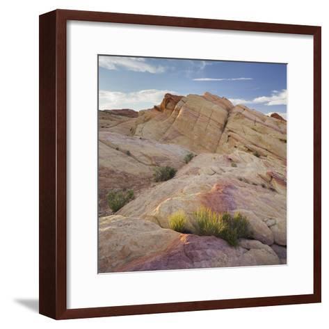 Sandstone, Valley of Fire State Park, Nevada, Usa-Rainer Mirau-Framed Art Print
