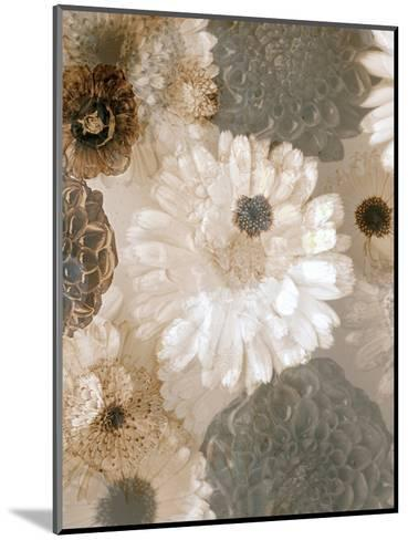 Photographic Layer Work from White and Brown Blossoms-Alaya Gadeh-Mounted Photographic Print
