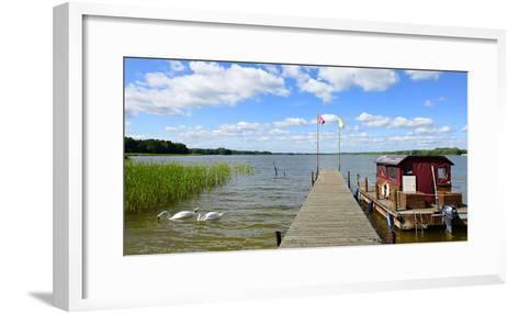 Germany, Brandenburg, Himmelpfort, Stolpsee, Jetty, Raft, Swans-Andreas Vitting-Framed Art Print