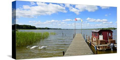 Germany, Brandenburg, Himmelpfort, Stolpsee, Jetty, Raft, Swans-Andreas Vitting-Stretched Canvas Print