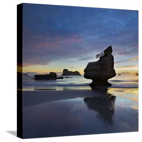 Mares Leg Cove, Coromadel Peninsula, Waikato, North Island, New Zealand-Rainer Mirau-Stretched Canvas Print