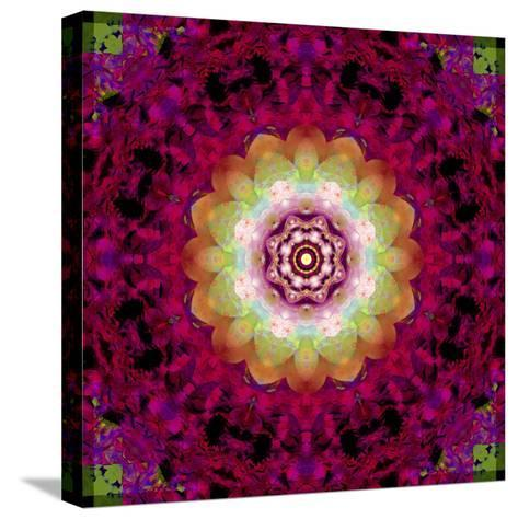 Symmetrical Ornament of Flower Photos-Alaya Gadeh-Stretched Canvas Print