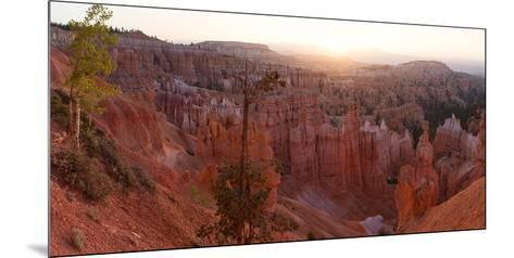 Panorama, USA, Bryce Canyon National Park, Amphitheatre-Catharina Lux-Mounted Photographic Print