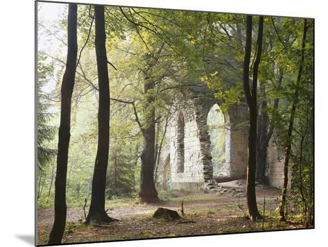 France, Haute-Savoie, Forest, Church Ruin, Near Chamonix-Thonig-Mounted Photographic Print