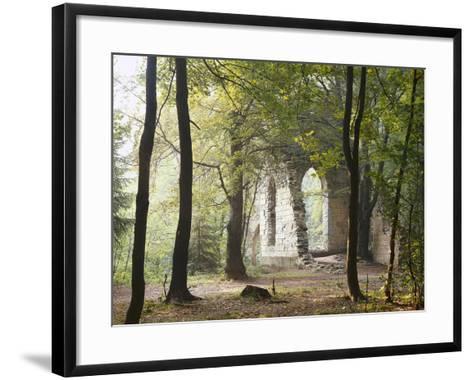 France, Haute-Savoie, Forest, Church Ruin, Near Chamonix-Thonig-Framed Art Print