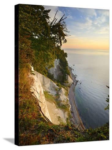 Chalk Rocks in the Morning Light, National Park Jasmund, Mecklenburg-West Pomerania-Andreas Vitting-Stretched Canvas Print