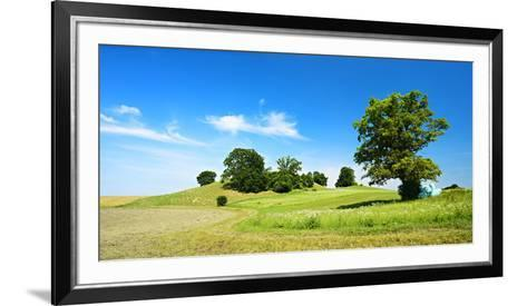 Cultivated Landscape with 'SolitŠr Eiche' (Oak), Agriculturally Extensively Used Meadows, Bavaria-Andreas Vitting-Framed Art Print