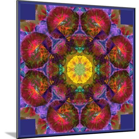 Symmetric Multicolor Layer Work of Blossoms-Alaya Gadeh-Mounted Photographic Print