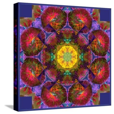 Symmetric Multicolor Layer Work of Blossoms-Alaya Gadeh-Stretched Canvas Print
