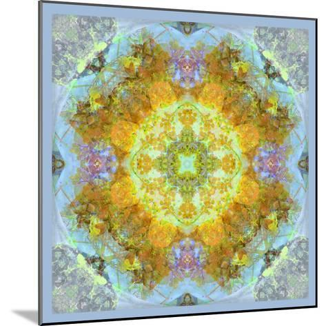 Symmetrical Ornaments, Mandala, Colourful-Alaya Gadeh-Mounted Photographic Print