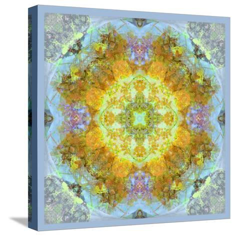 Symmetrical Ornaments, Mandala, Colourful-Alaya Gadeh-Stretched Canvas Print