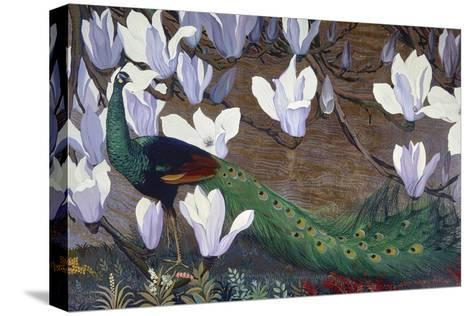 Peacock and Magnolia-Jesse Arms Botke-Stretched Canvas Print