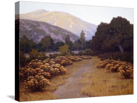 The Last Rays-John Gamble-Stretched Canvas Print