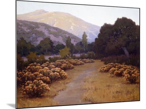 The Last Rays-John Gamble-Mounted Art Print