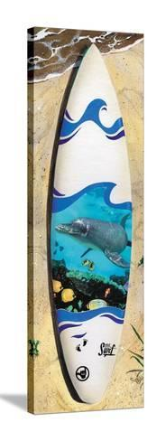 Dolphin Board-Scott Westmoreland-Stretched Canvas Print