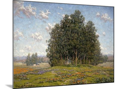 Wildflowers and Eucalyptus-Granville Redmond-Mounted Art Print