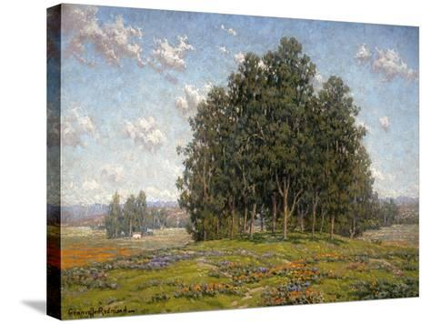 Wildflowers and Eucalyptus-Granville Redmond-Stretched Canvas Print