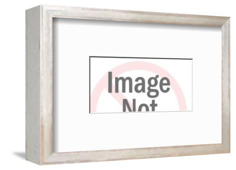 Tote-Pop Ink - CSA Images-Framed Art Print