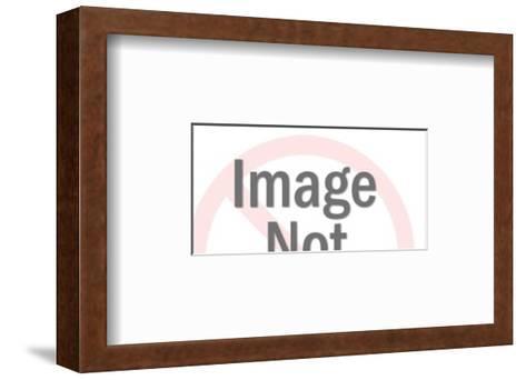 Cow-Pop Ink - CSA Images-Framed Art Print