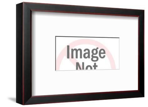 Spider-Pop Ink - CSA Images-Framed Art Print