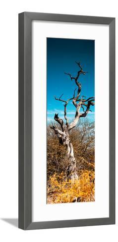 Awesome South Africa Collection Panoramic - Dead Tree II-Philippe Hugonnard-Framed Art Print