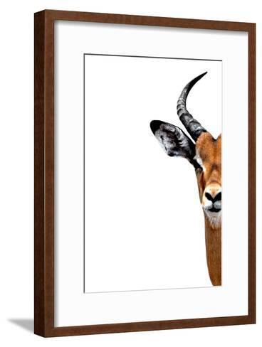 Safari Profile Collection - Antelope Face White Edition II-Philippe Hugonnard-Framed Art Print