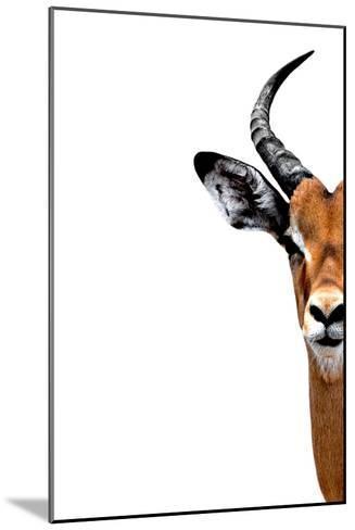 Safari Profile Collection - Antelope Face White Edition II-Philippe Hugonnard-Mounted Photographic Print