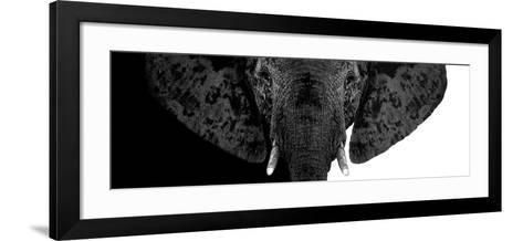 Safari Profile Collection - Elephant B&W II-Philippe Hugonnard-Framed Art Print