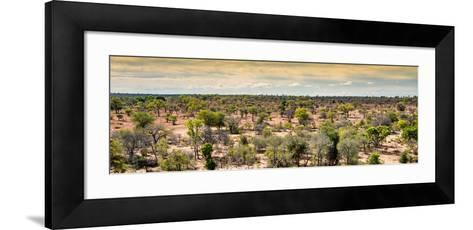 Awesome South Africa Collection Panoramic - Wide Landscape with Trees-Philippe Hugonnard-Framed Art Print